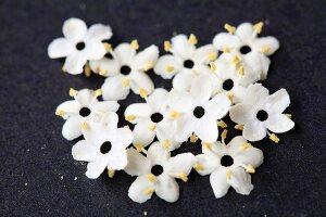 Elderflowers on black surface