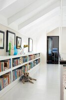 Bookcase integrated in low knee wall on gallery; dog lying on floor