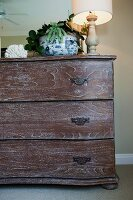 Detail of wooden chest of drawers, house plant and lit lamp against wall; California; USA