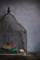 Antique bird cage, old books, honeycomb, purple flowers and a sea shell