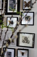 Framed pictures of facial features and insects behind blurred flowering branches in foreground