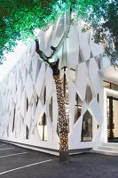 Architektonisch moderne Aussenwand eines Gebäudes, im Vordergrund Baum mit Lichterkette