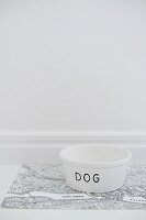 White dog bowl labelled 'Dog'