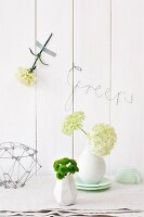 Small chrysanthemums and viburnum in vases, sweet William taped to wall and bent wire spelling 'Green'