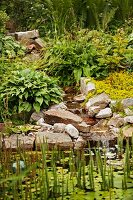Waterfall lined with rocks falling into pond with aquatic plants
