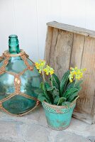 Cowslip in turquoise flowerpot next to old blue bottle in macramé net on terrace floor