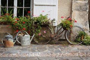 Altes Fahrrad mit Blumenschmuck und Giesskannen auf Steinpflaster vor einem Landhaus