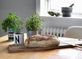 Various kitchen herbs planted in tin cans and mug next to farmhouse loaf on wooden board