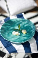 White sprig of flowers on hand-made, turquoise dish