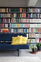 Couch with yellow scatter cushions and house plants on floor in front of bookcase