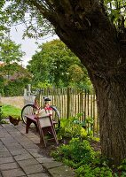 Bench and bicycles behind tree and next to garden fence