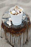 Bucket of seashells on weathered wooden post