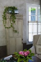 Potted ivy in zinc pot on antique patinated cupboard, bouquet of leaves and flowers on table in foreground