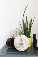 Honeycomb paper balls and house plant on grey metal cabinet