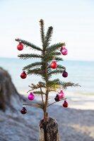 Mit Weihnachtskugeln dekorierter Tannenzweig in Holzpfosten gesteckt, im Hintergrund Meerufer