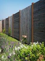 Holzzaun aus Paneelen mit horizontalen und vertikalen Brettern, blühende Blumen im Garten