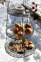 Bird feeding station on three levels: wire cake stand filled with bird food