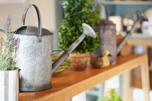 Watering cans, lavender and potted plant on wooden bench