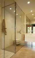 White washstand and large mirror next to glazed toilet cubicle