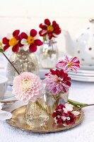 Table centrepiece of bicolour dahlias on silver tray and mercury glass vases