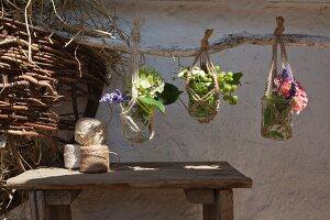 Various flowering plants in preserving jars in macrame plant hangers suspended from rustic branch