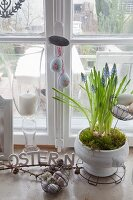 Romantic country-house arrangement of grape hyacinths and Easter eggs on windowsill