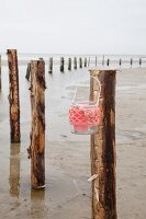 Candle lantern with coral-pink crocheted over hung from wooden post on beach