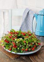 Kranz aus roten Chilischoten auf Schale auf Vintage Küchentisch
