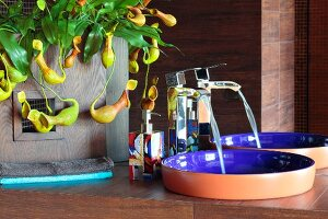 Water running into designer sink next to potted pitcher plant