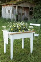 Arrangement of grasses, apples and ox-eye daisies on white wooden table on green lawn in front of wooden cabin
