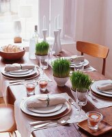 Simple wooden dining table with place settings, potted grasses and linen napkins