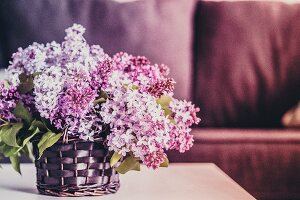 Bouquet of lilacs against wooden background