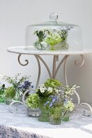 Arrangement of tiny vases of spring flowers on table & under glass cover