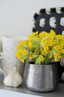Bouquet of cowslips in silver metal vase