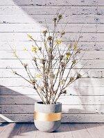 Zweige im Blumentopf aus Beton mit goldenen Streifen vor Bretterwand mit abgeblätterter Farbe