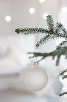 White Christmas baubles with white feature hanging from fir branche