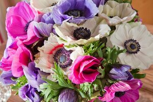 Opulent bouquet of anemones of various colours