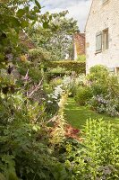 Flowering garden of French manor house