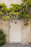 Flowering wisteria on stone façade above white wooden door with door knocker