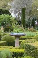 Birdbath on plinth in topiary garden