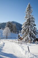 Snowy path, cabin and mountain landscape below blue sky