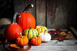 Bunte Kürbisse und Herbstblätter auf rustikalem Holzuntergrund