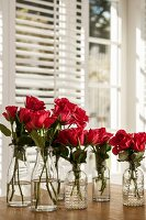 Red roses in various retro glass bottles on table