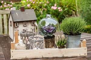 Tealight holders, potted herbs and ornamental cabbage under glass cover in front of miniature house on garden table