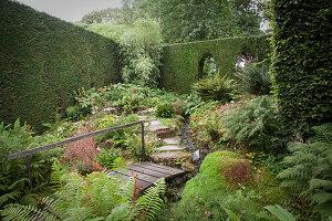 Idyllic green garden wit tall hedge, stone-flagged path, stream and wooden bridge