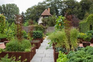 Vegetables growing in raised bed edged by woven iron rods