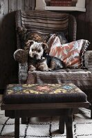 Small dog on wicker armchair with vintage cushions and tapestry stool