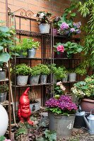 Potted plants on decorative metal shelves against garden wall