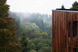 Modern wooden house in woodland landscape