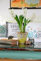 White hyacinths in painted terracotta pot, old books and elephant figurine on glass table top in vintage atmosphere